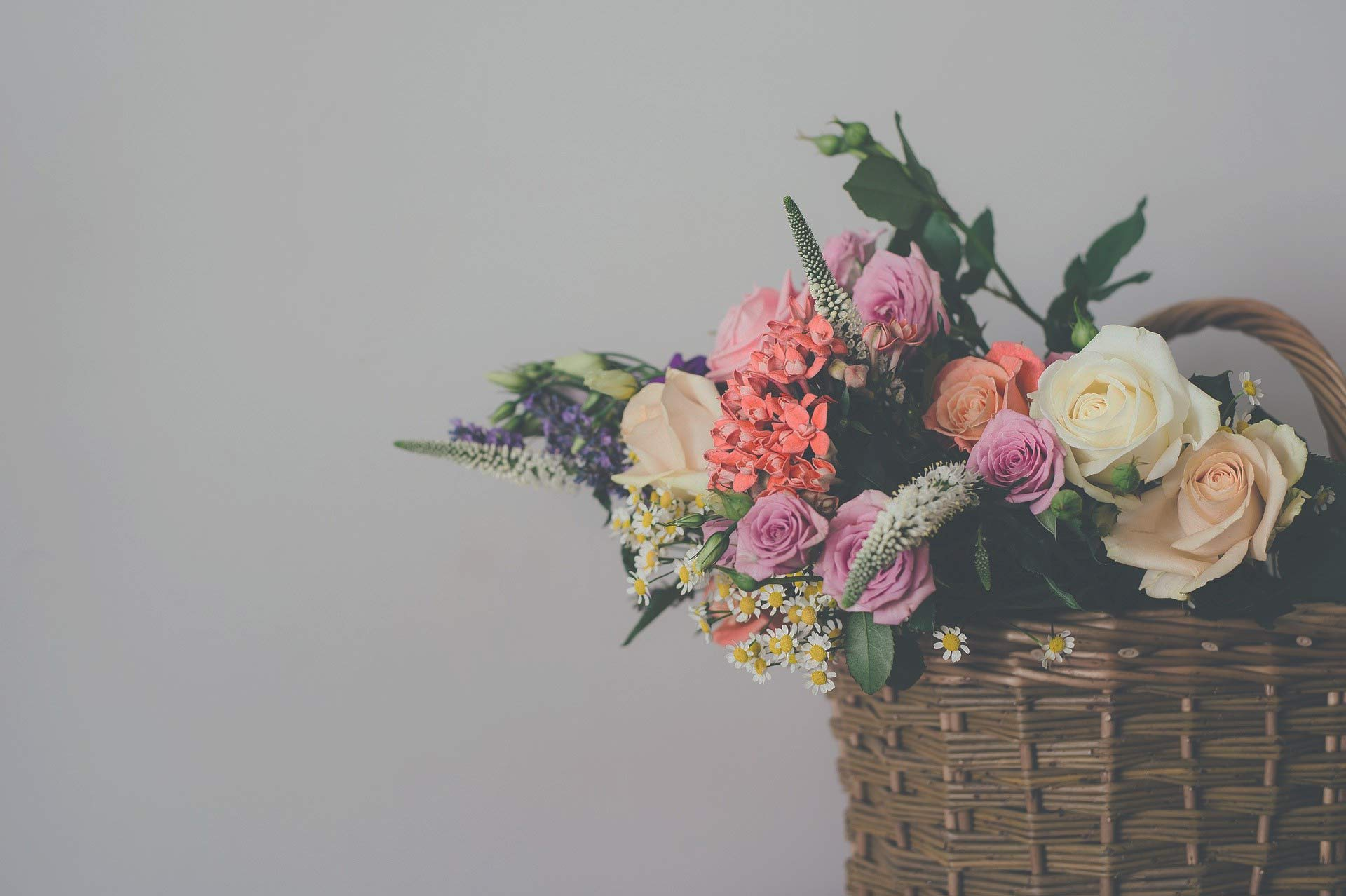 La Riviera, votre boutique de fleurs a Castres
